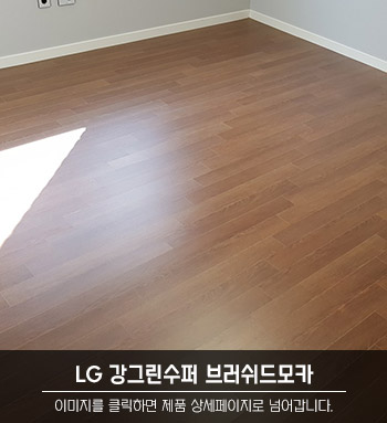 LG 강그린수퍼 브러쉬드모카